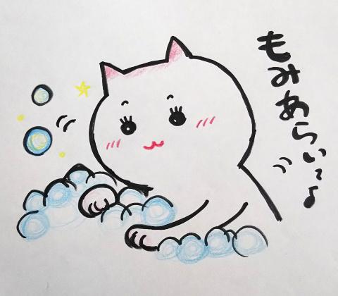 もみ洗いする猫
